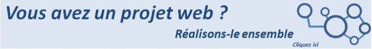 Réaliser un projet web à l'aide d'un conseiller en stratégie numérique.